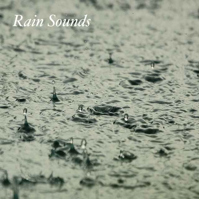 Best Rain Sounds: Loopable Rain Sound Meditation, Relaxing Sound of Rain, Soothing Ambient Sounds, Massage Yoga Music