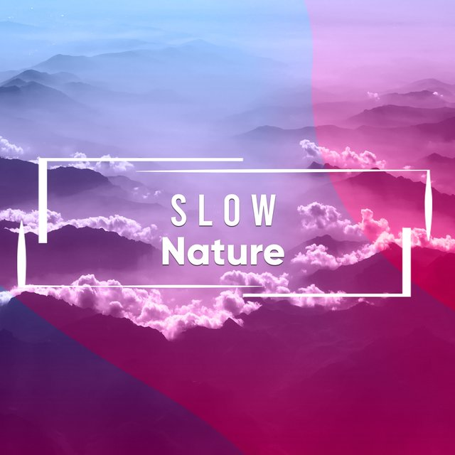 #Slow Nature