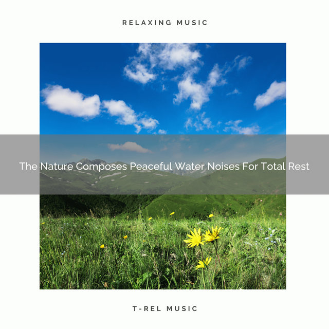 The Nature Composes Peaceful Water Noises For Total Rest
