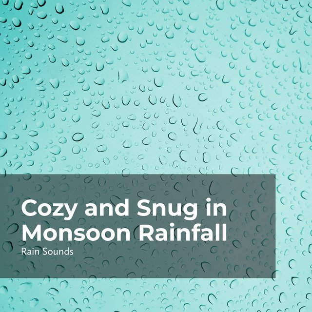 Cozy and Snug in Monsoon Rainfall