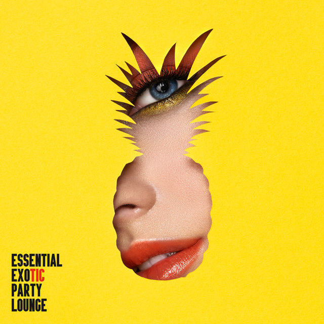 Essential Exotic Party Lounge: Compilation of 15 Best Electronic Vibes for Party, Deep Relax & Rest, Have Fun