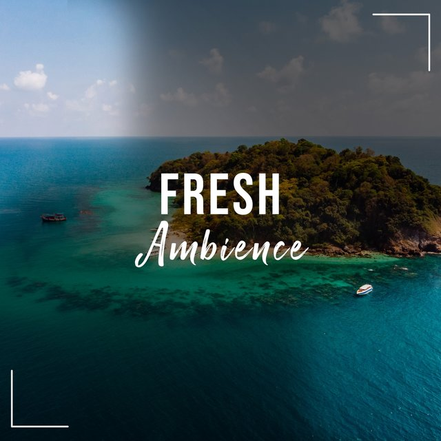 # Fresh Ambience