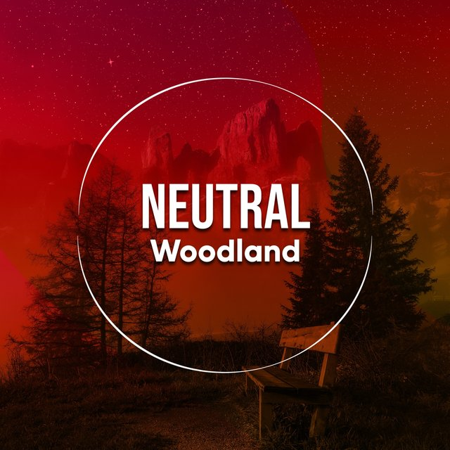# 1 Album: Neutral Woodland