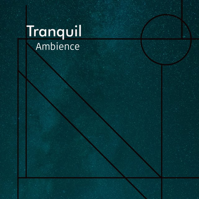 # 1 Album: Tranquil Ambience