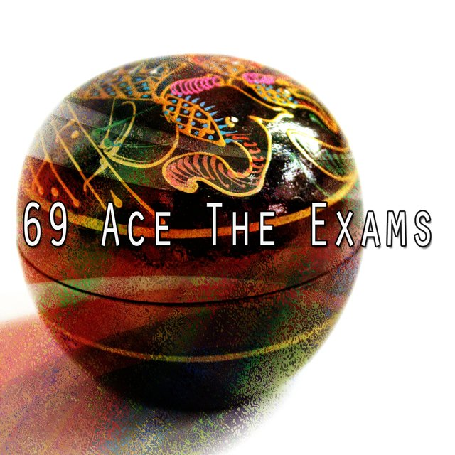 69 Ace the Exams