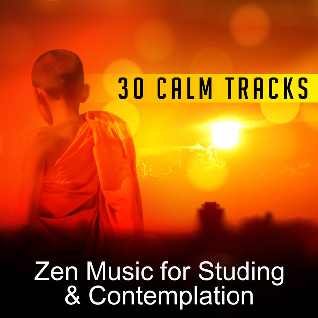30 Calm Tracks: Zen Music for Studing & Contemplation – Bacground Music to Help You Focus, Better Concentration, Successful Brain Training & Improve Your Mind