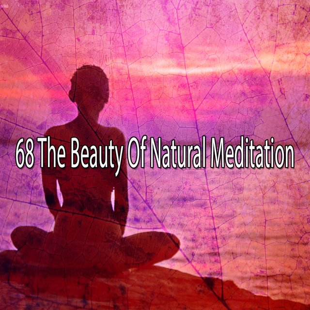 68 The Beauty of Natural Meditation