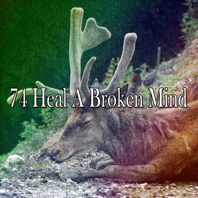 74 Heal a Broken Mind