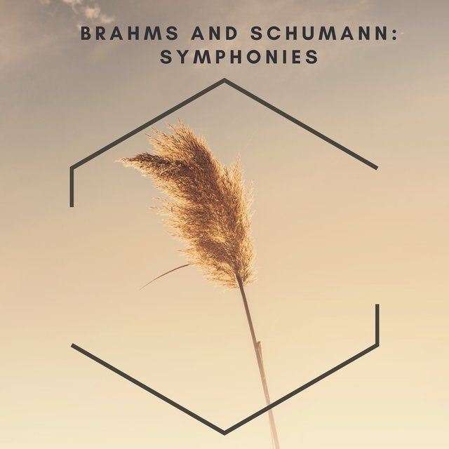 Brahms and Schumann: Symphonies