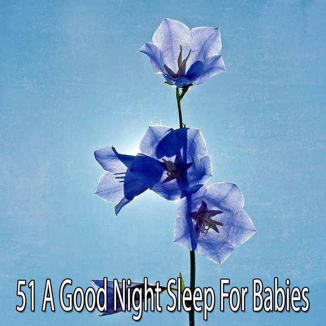 51 A Good Night Sleep for Babies