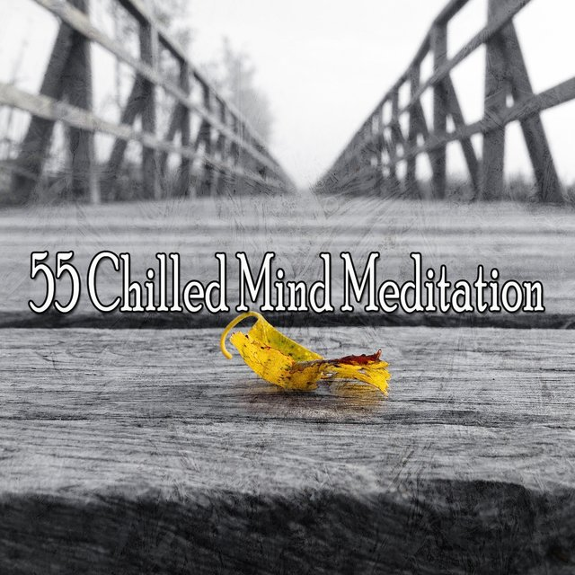 55 Chilled Mind Meditation