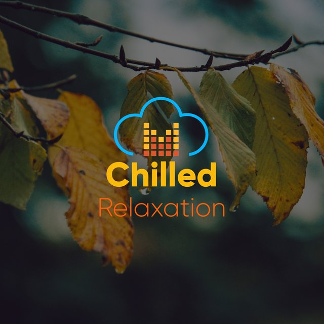 # 1 Album: Chilled Relaxation