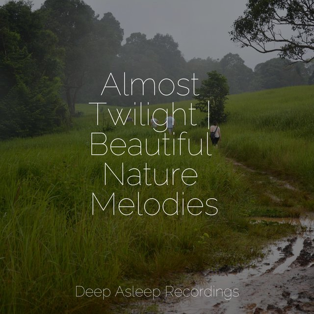 Almost Twilight | Beautiful Nature Melodies