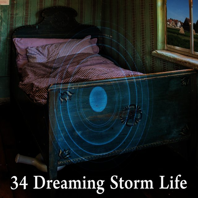34 Dreaming Storm Life