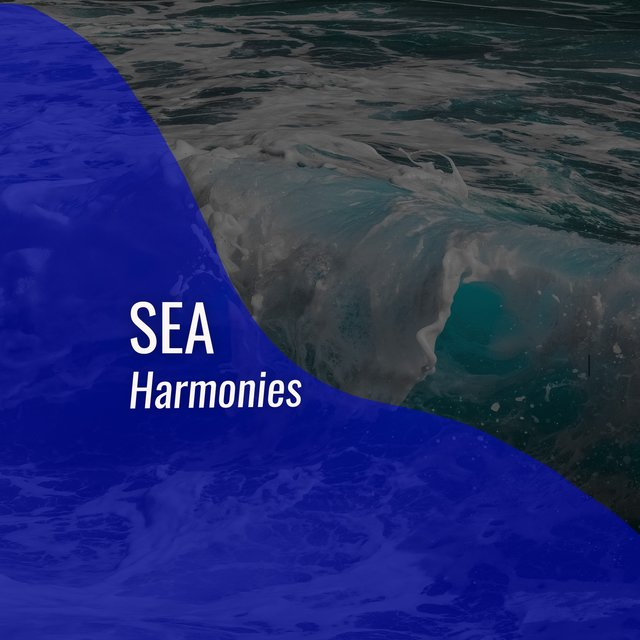 Background Sea Harmonies