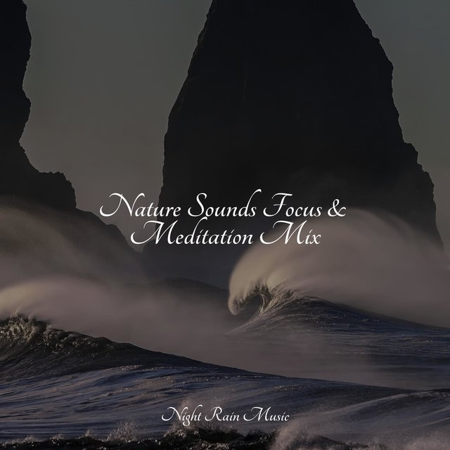 Nature Sounds Focus & Meditation Mix