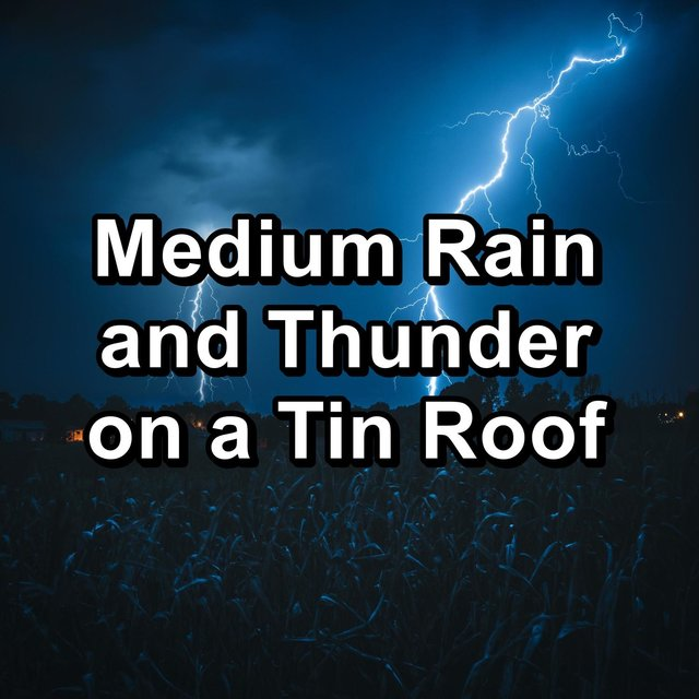 Medium Rain and Thunder on a Tin Roof