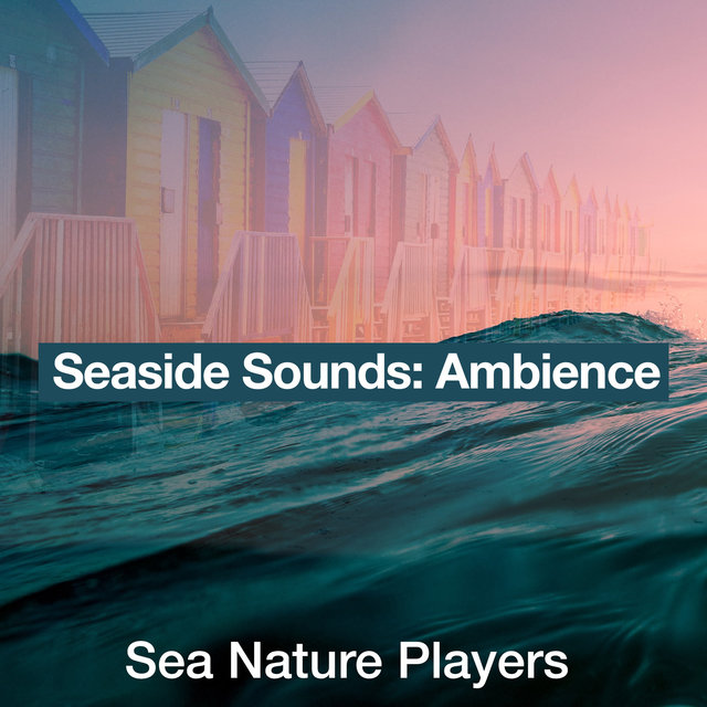 Seaside Sounds: Ambience