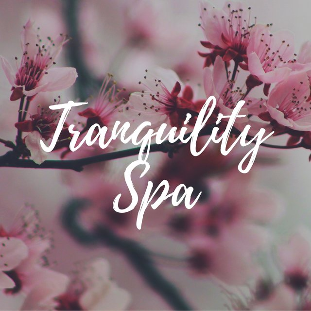 Tranquility Spa: Serenity Relaxing Piano Music with the Sounds of Nature for Total Relax, Most Popular Songs for Massage Therapy