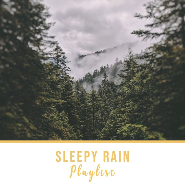 HD Sleepy Rain & Water Playlist