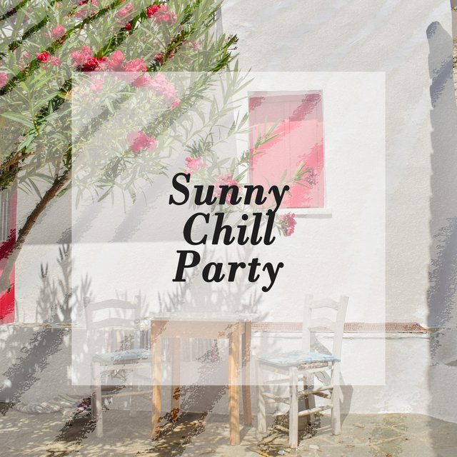 Sunny Chill Party