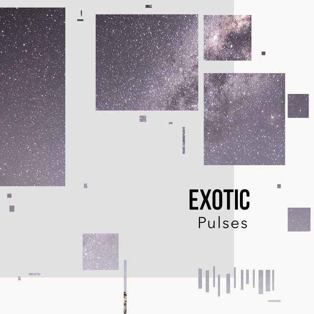 # 1 Album: Exotic Pulses