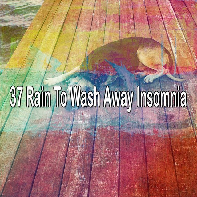 37 Rain to Wash Away Insomnia