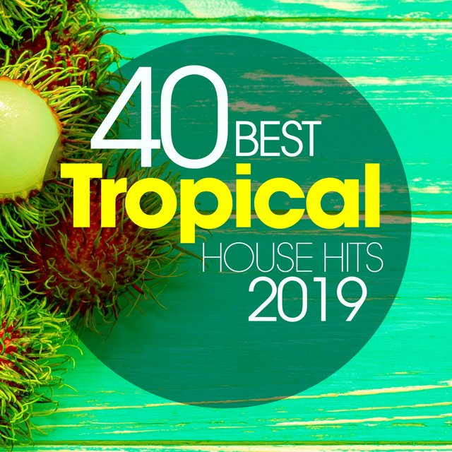 40 Best Tropical House Hits 2019