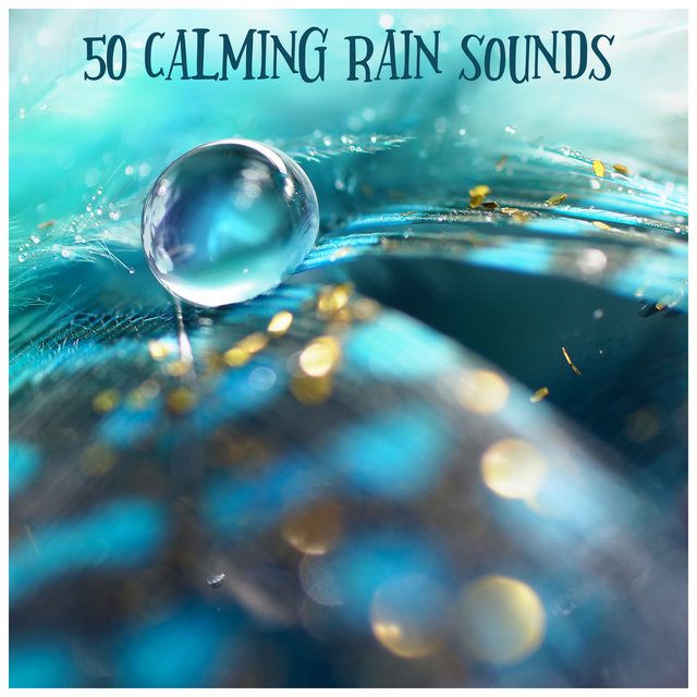 50 Calming Rain Sounds