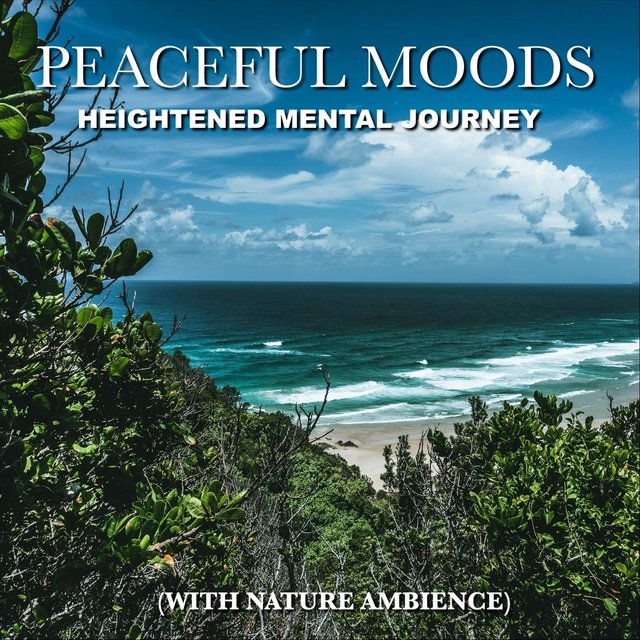Peaceful Moods, Heightened Mental Journey (With Nature Ambience)