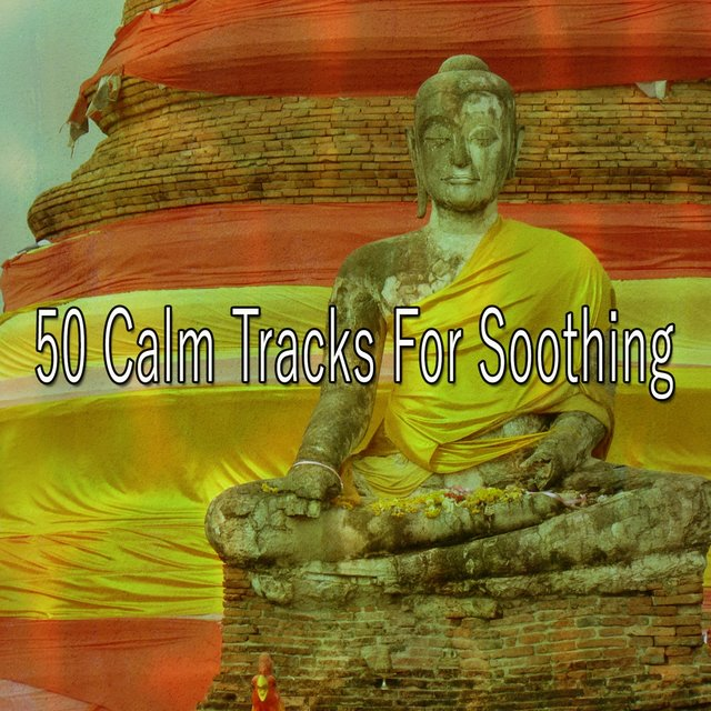 50 Calm Tracks for Soothing
