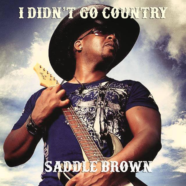 I Didn't Go Country