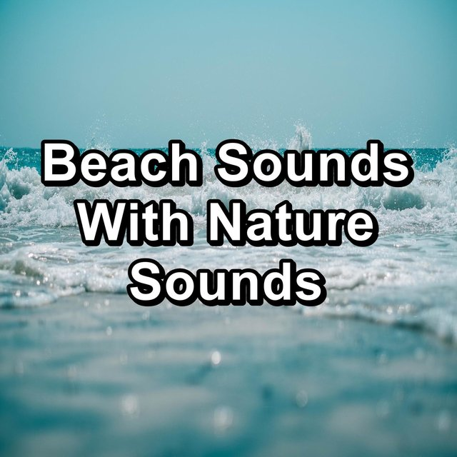 Beach Sounds With Nature Sounds