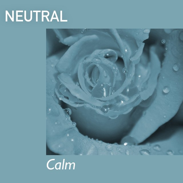 # 1 Album: Neutral Calm