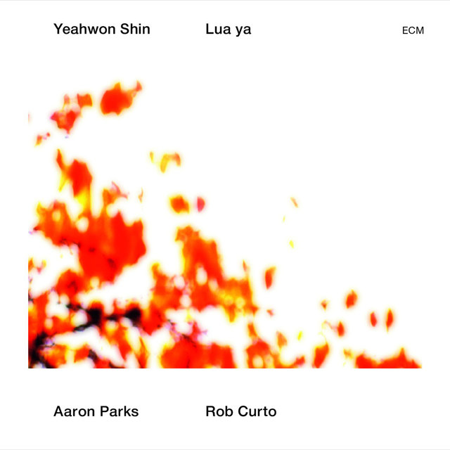 Cover art for album  by Yeahwon Shin, Aaron Parks, Rob Curto
