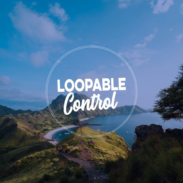 Loopable Control
