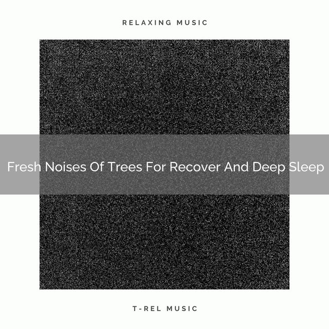 2021 New: Fresh Noises Of Trees For Recover And Deep Sleep