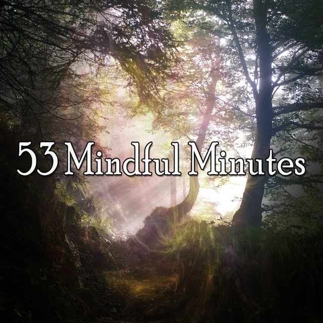 53 Mindful Minutes