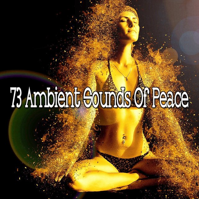 73 Ambient Sounds of Peace