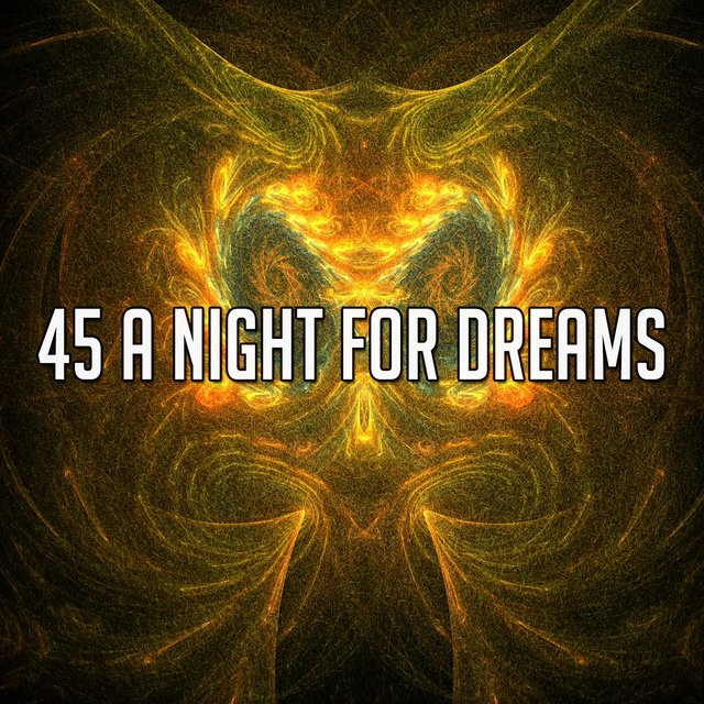 45 A Night for Dreams