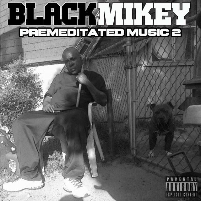Premeditated Music 2