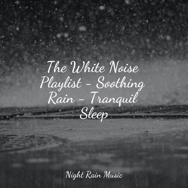 The White Noise Playlist - Soothing Rain - Tranquil Sleep