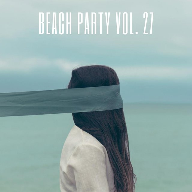 Beach Party Vol. 27