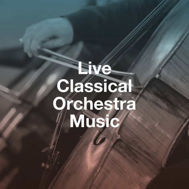 Live Classical Orchestra Music