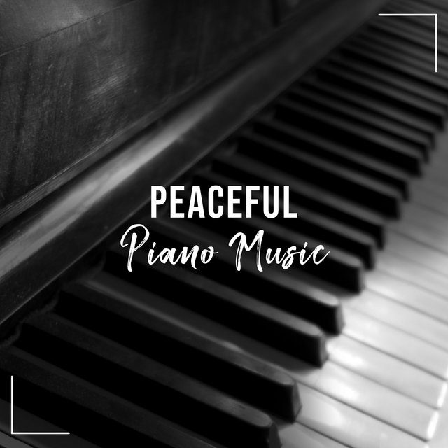 Peaceful Reading Piano Music