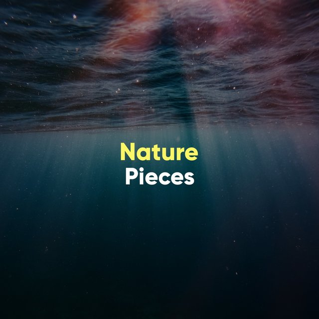 Soothing International Nature Pieces