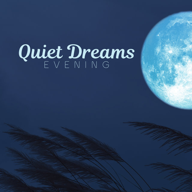 Quiet Dreams Evening: Deep Sleep Music, Melody of Piano & Violin, Nature Songs Full of Rain, Raindrops, Birds Singing, Relaxing Time, Calm Down, Stress Relief