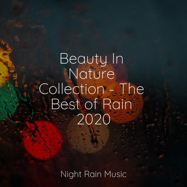 Beauty In Nature Collection - The Best of Rain 2020