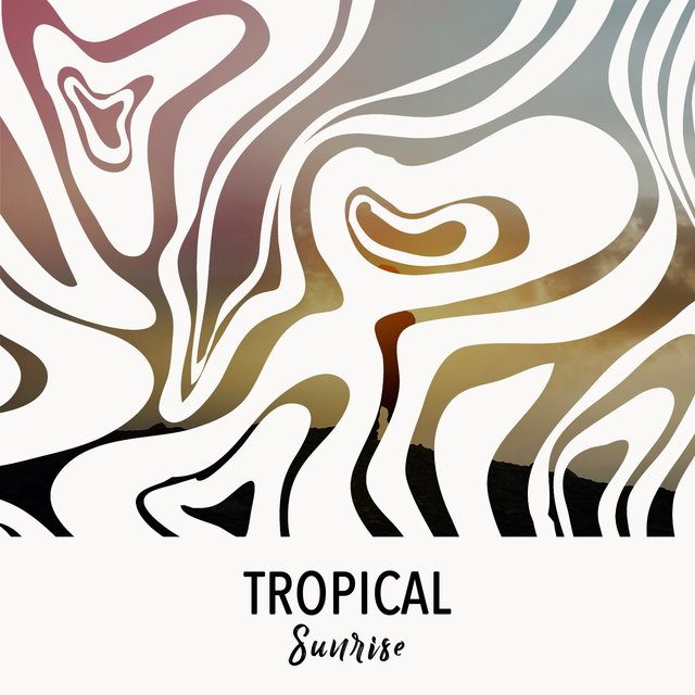 # 1 Album: Tropical Sunrise
