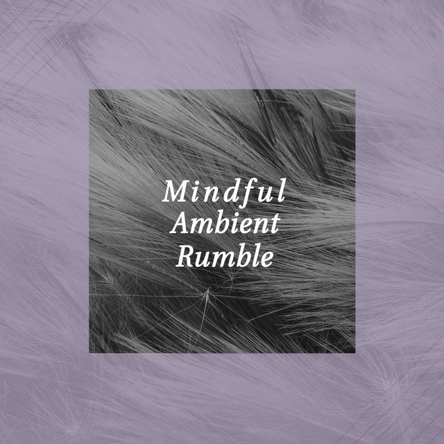 Mindful Ambient Rumble